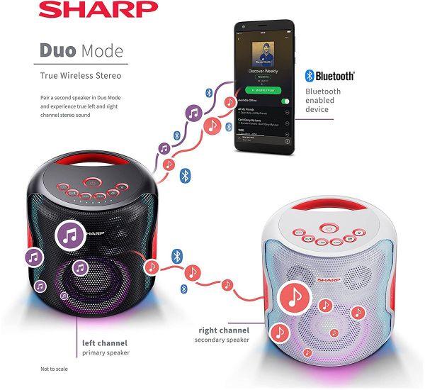 Sharp PS-919